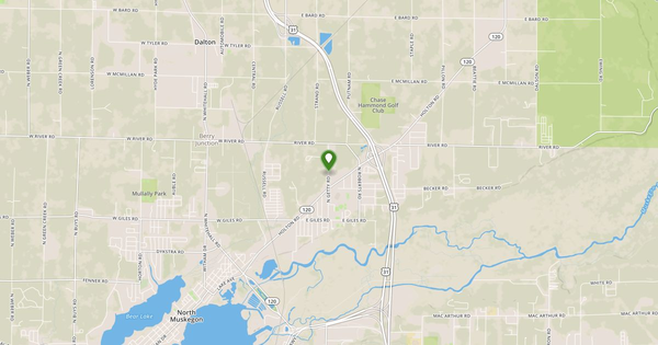 Bear Creek Near Muskegon Flow Report | Michigan USGS 04122100